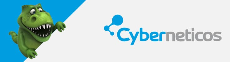 analisis hosting Cyberneticos